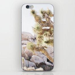 Close Up Of Joshua Tree In Desert iPhone Skin
