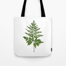 Fern 2 Painting Tote Bag