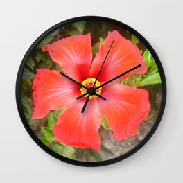 Head On Shot of a Red Tropical Hibiscus Flower Wall Clock