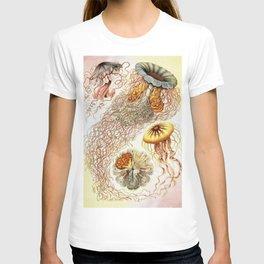 SEA CREATURES COLLAGE-Ernst Haeckel T-shirt