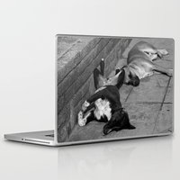 greek Laptop & iPad Skins featuring Greek Dogs by Upperleft Studios