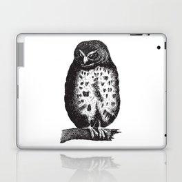 Fluffy owl Laptop & iPad Skin