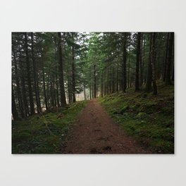 Take the fox's path - Scotland Canvas Print