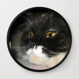 Cat Study Wall Clock