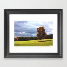 Field of Dreams Framed Art Print