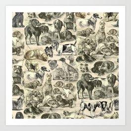 KENNEL - OVER 20 DOG BREEDS COLLAGE Art Print