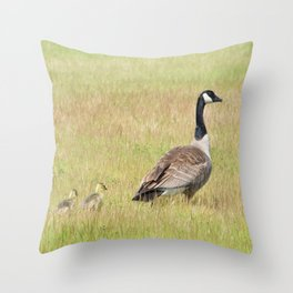 Goslings following mama Canada Goose Throw Pillow