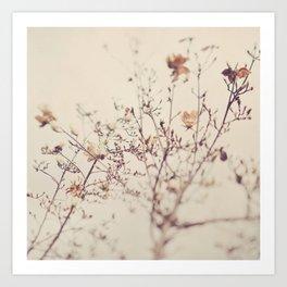 Magnolia tree. Winter Art Print