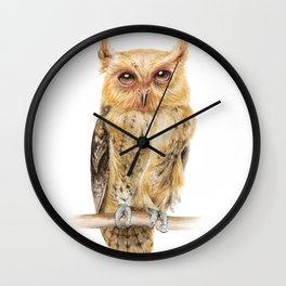 Owl Watercolour Print | Philippine Scops Owl Wall Clock