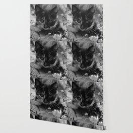 kitty watching Wallpaper