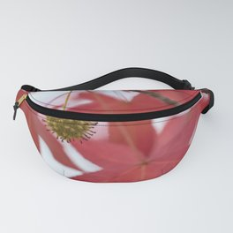 Sweet Red Fanny Pack