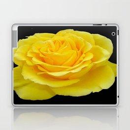 Beautiful Yellow Rose Flower on Black Background Laptop & iPad Skin