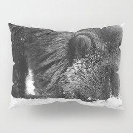 Alaskan Grizzly Bear in Snow, B & W - 2 Pillow Sham