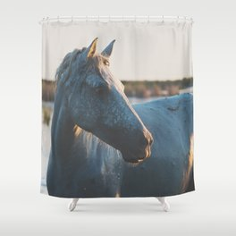 a horse in portrait ... Shower Curtain