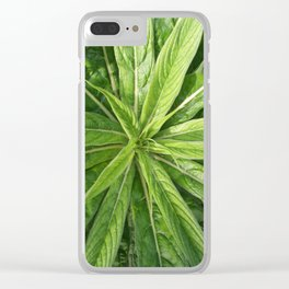 Cornwall Gardens Green Leaves Photo 1775 Clear iPhone Case