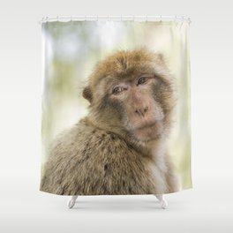 Monkey around Shower Curtain