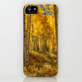 Autumn Aspen Forest Aspen Colorado iPhone Case