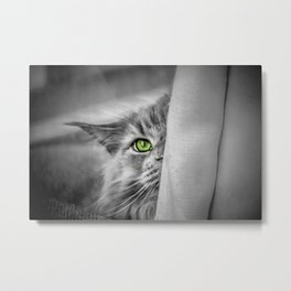 Small brother is watching you (b&w) Metal Print