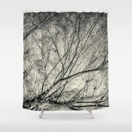 Incandescence bw ambro Shower Curtain