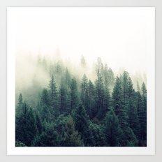 Foggy Winter Forest Art Print