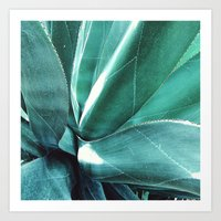 cactus Art Prints featuring Cactus by Alexandra Str