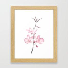 pink cherry blossom macro 2018 Framed Art Print