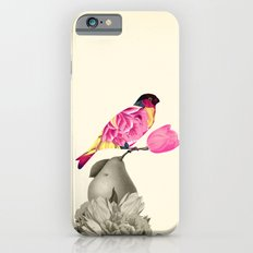 The Bird & the Pear iPhone 6s Slim Case
