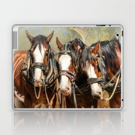 Clydesdale Conversation Laptop & iPad Skin