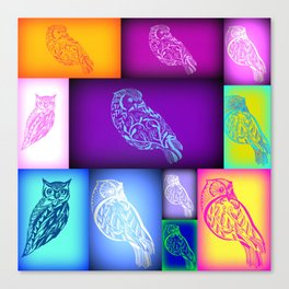 Abstract owls with rainbow colours Canvas Print