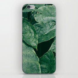 Leaves II iPhone Skin