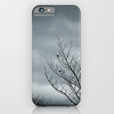 Your Coldness Slim Case iPhone 6s