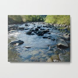 Molalla River Metal Print
