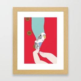 Parakeet in my sweater! Framed Art Print
