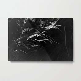 Flims I Metal Print