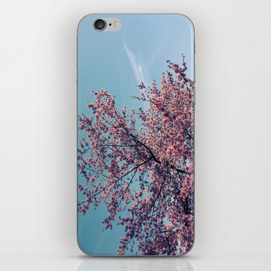 Blossom Into Spring iPhone & iPod Skin