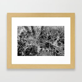WEB STOCK Framed Art Print