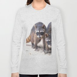 Cute wild Racoons in Costa Rica Long Sleeve T-shirt