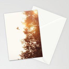 Nuevo amanecer Stationery Cards