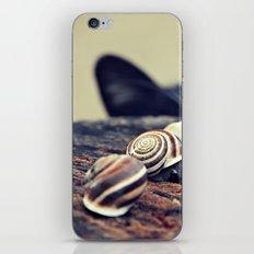 Cat Snails iPhone & iPod Skin
