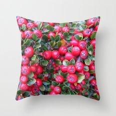 Rojo y Verde Throw Pillow