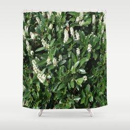 green/white Shower Curtain