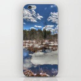 Early Spring Marsh iPhone Skin
