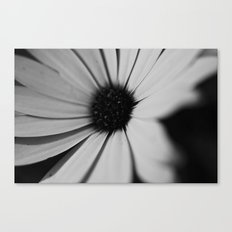 Black Daisy Canvas Print