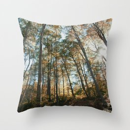 into the woods 08 Throw Pillow