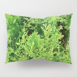 EVERGREEN Pillow Sham
