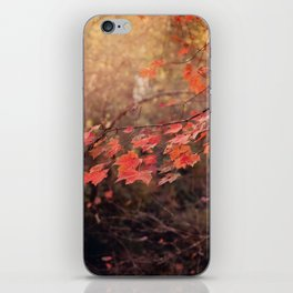 Autumn Leaves of Red iPhone Skin