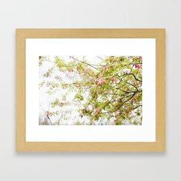 Spring Confetti Framed Art Print