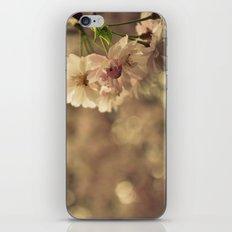 Cherry Blossom Bokeh iPhone & iPod Skin