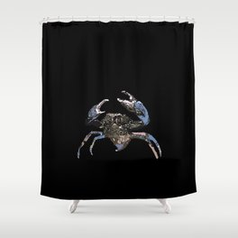 Mud Crab Scylla serrata Shower Curtain