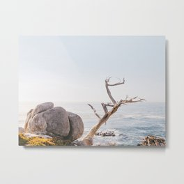 Zen Coast - California Photography Metal Print